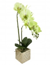 Dahlia Natural Looking Artificial Orchid Plant with Ceramic Pot Flower Arrangement